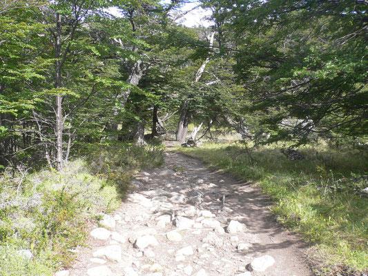 Bild: Der Wanderweg