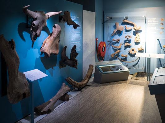 Museum von Schokland in den Niederlanden - Foto 1