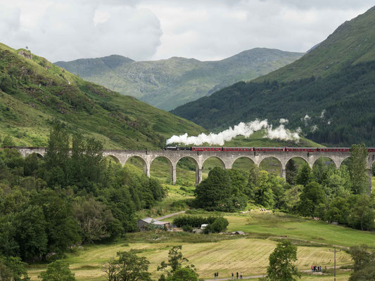 Bild: Das Glenfinnan Viadukt 3
