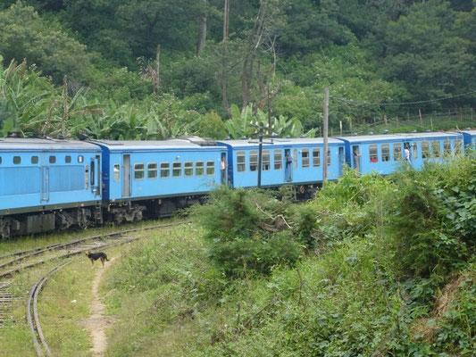 Bild: Zug von Kandy nach Ella in Sri Lanka