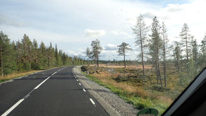 Bild: Fahrt Richtung Storforsen