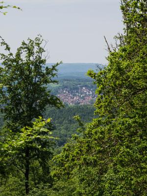 Bild: Wanderung von Zorge nach Wolkenried - Foto 1