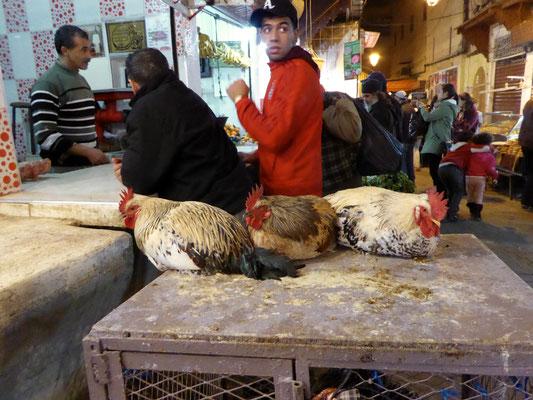 Bild: Hühner zum Verkauf in der Kasbah von Fes