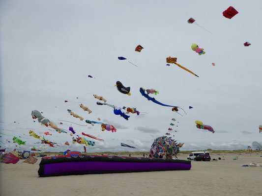 Bild: Drachen Festival in St. Peter-Ording - Foto 1