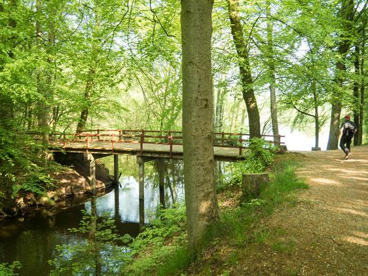 Aufnahme unseres Wanderweges über die Brücke