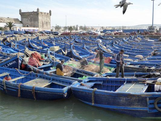 Bild: Fischerboote im Hafen von Essarouira