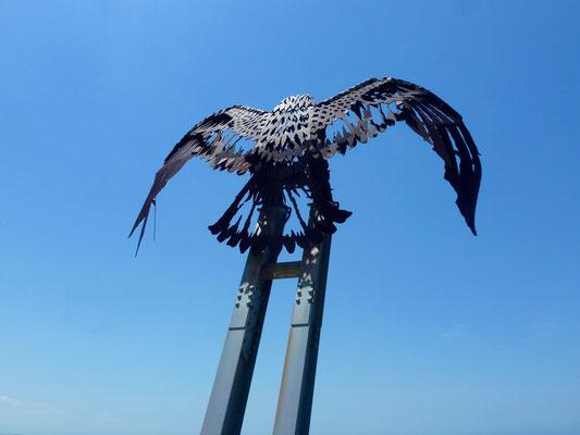 Bild: Sea Eagle - By Crag Medson - 1983