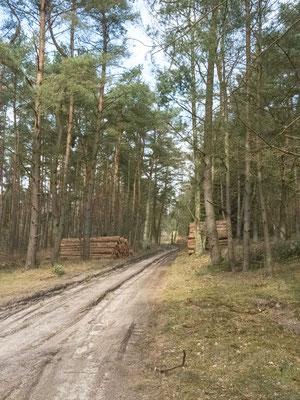 Bild: Unser Wanderweg durch das Naturschutzgebiet Talhänge bei Göttin