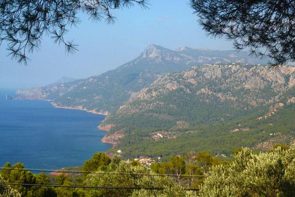 Herrlicher Ausblick auf die Wälder des Tramuntana Gebirges