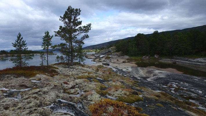 Bild: Am Fjord bei Tømmerneset