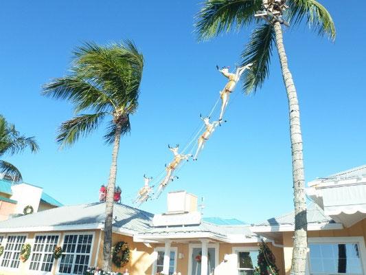Bild: Der Weihnachtsmann in Florida - Foto 3