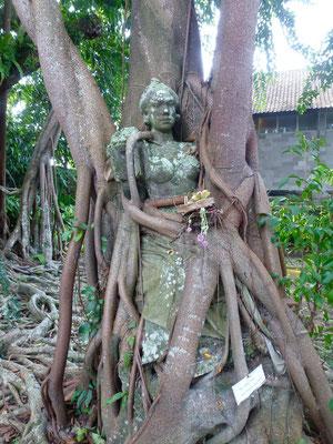 Bild: Frau im Wurzelwerk des Baumes versteckt
