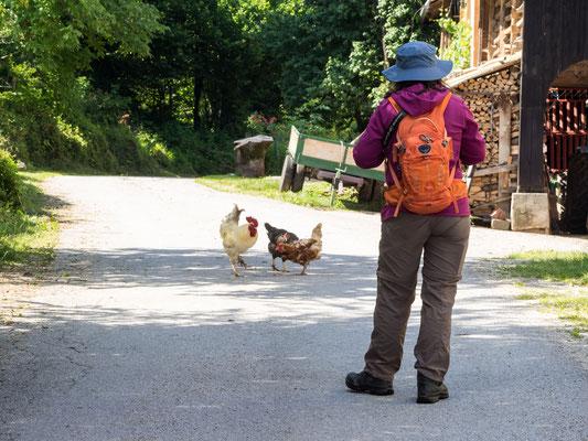 Ankunft in Otok am Sickersee bei Cerknica in Slowenien