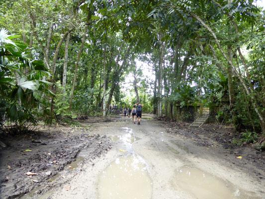 Bild: Mühseliger Weg durch den Nationalpark Tayrona
