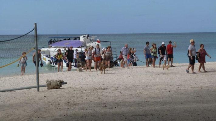 Bild: Ankunft von All-Inclusive Touristen auf der Insel Barbacoa