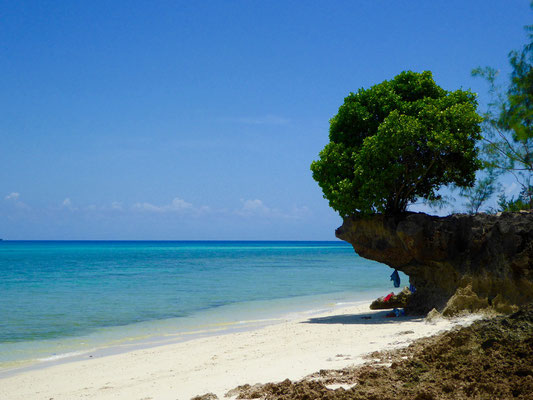 Bild: Herrlicher Strand