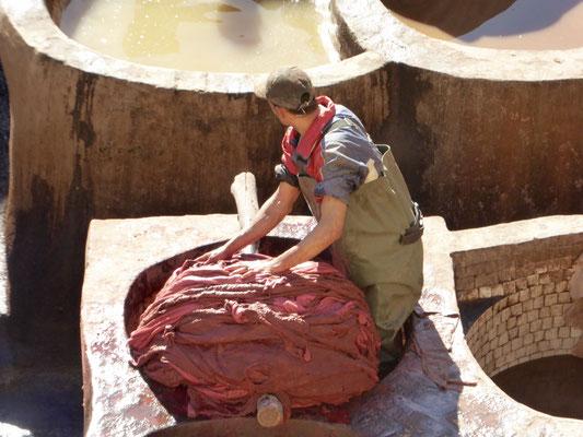 Bild: Die Flüssigkeit wird aus den Lederhäute gedrückt