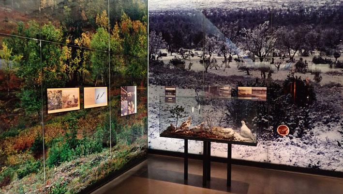 Bild: Museum