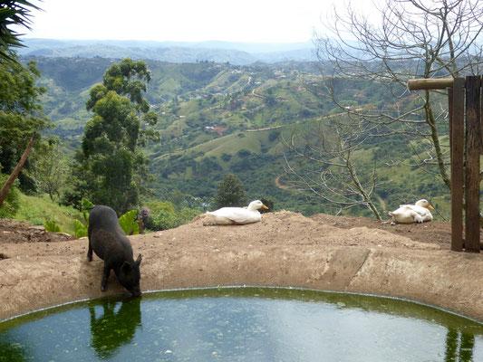 Bild: Blick auf das KwaZulu-Natal