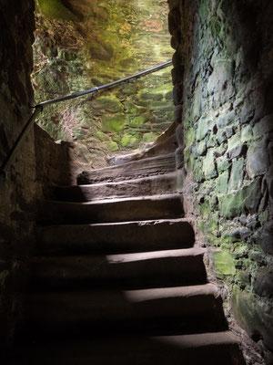 Bild: Dunnottar Castle