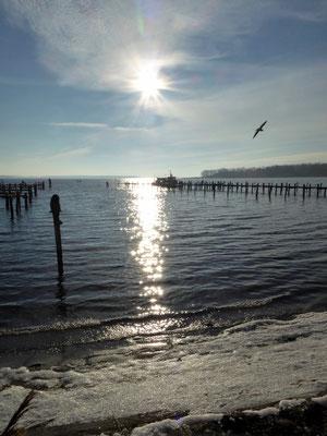 Bild: Impressionen am Meer von Rerik am Salzhaff - Foto 2
