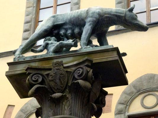 Bild: Wolf