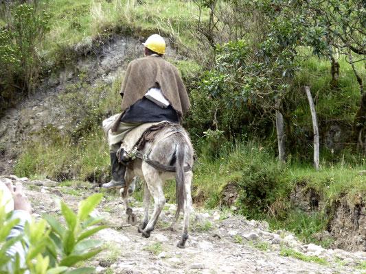 Bild: Bauer auf seinem Pferd auf dem Weg nach Hause