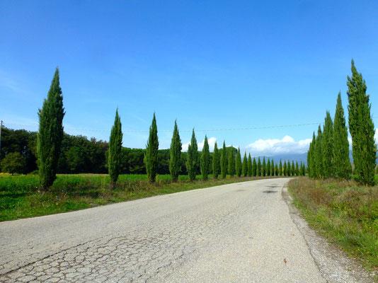 Bild: Landschaftsbild in der Toskana