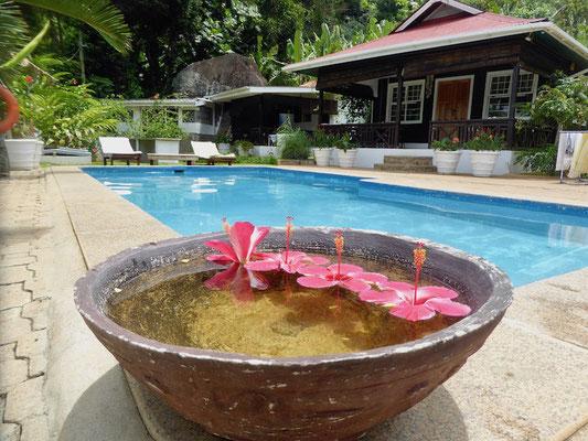 Bild: Blick auf den Pool
