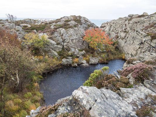 Bild: Der See