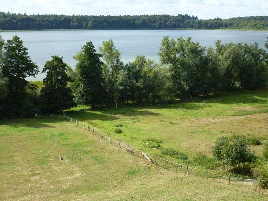 Bild: Blick auf den Schaalsee
