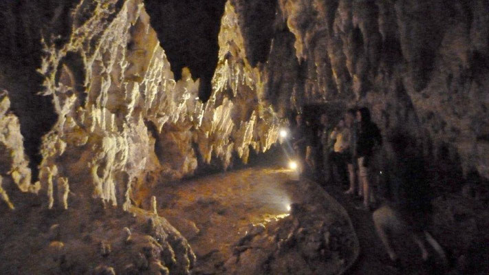 Bild: Die Waitcomo Caves