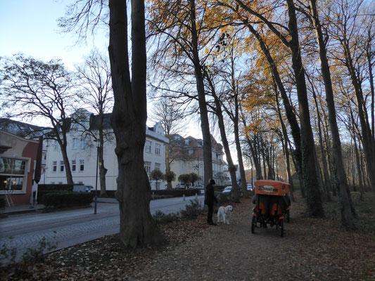 Bild: Blick auf die Straße vor unserem Hotel