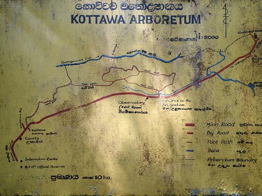 Bild: Kottawa Forrest Reserve