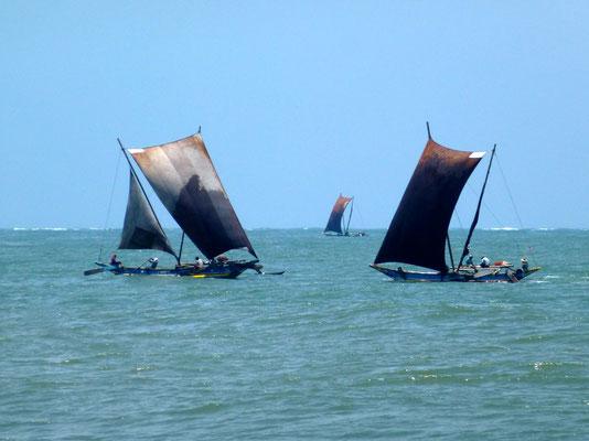 Bild: Fischerboote auf dem Meer