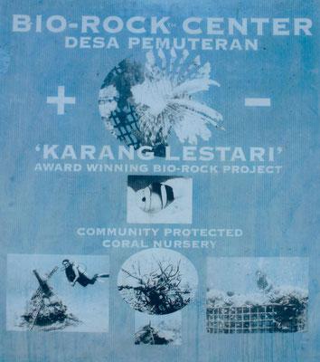 Bild: Das Bio Rock Projekt - Plakat