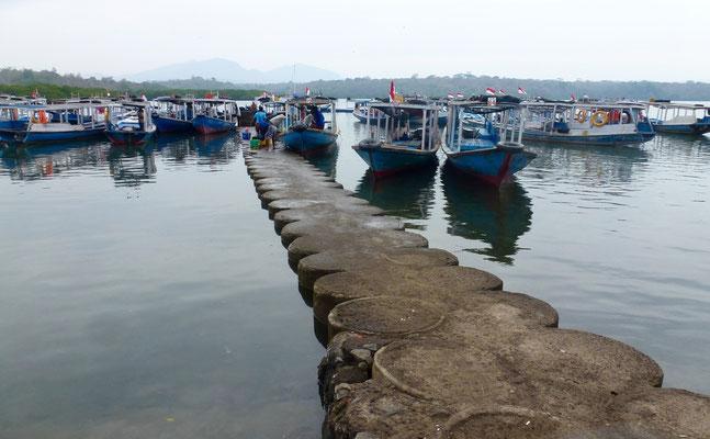 Bild: Viele Boote liegen für Schnorchelausflüge bereit
