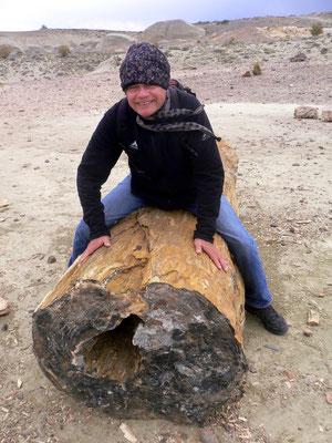 Bild: Ich reite einen versteinerten Baumstamm
