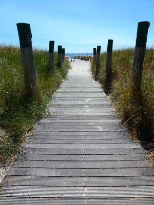 Bild: Weg zum Strand
