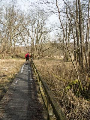Wanderung durch das Naturschutzgebiet Tal der Langballigau Foto 3