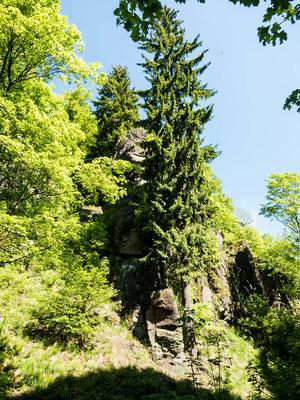 Bild: Wanderung durch das alte Vulkangebiet im Südharz - Foto 6