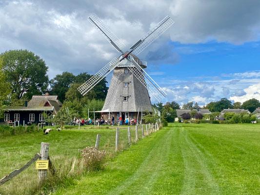 Bild: Alte Mühle