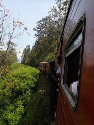 Bild: Unser fahrender Zug durch die Teeplantagen in Sri Lanka