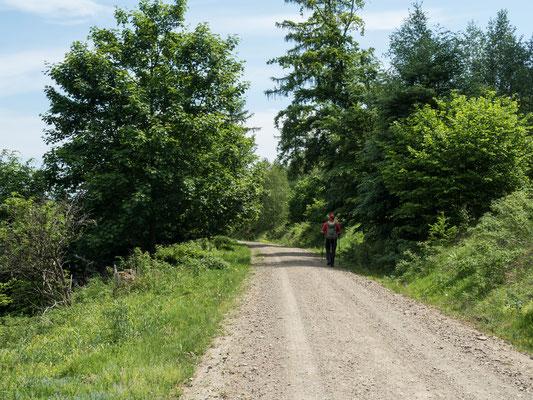 Bild: Wanderung von Zorge nach Wolkenried - Foto 2