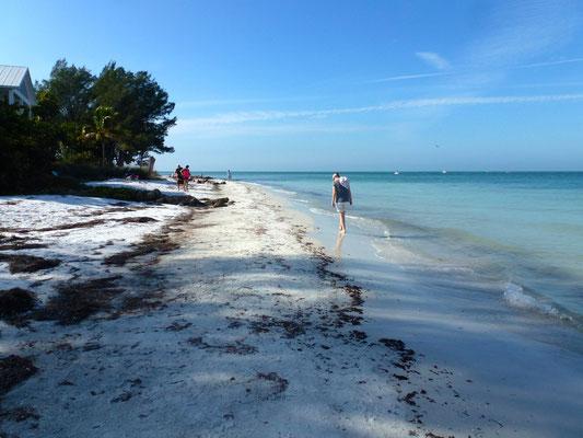 Ein langer Strand der zu langen Spazierengängen einlädt