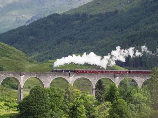 Bild: Das Glenfinnan Viadukt 2