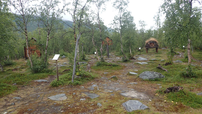 Samen-Camp