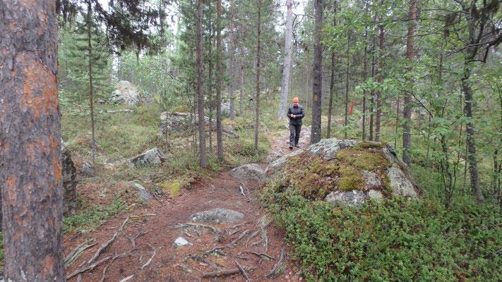 Bild: Wanderung Pielpajärven