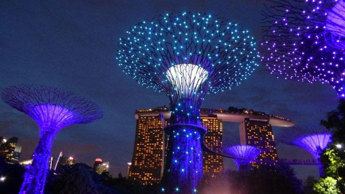 Bild: Marina Bay Sands Hotel bei Nacht in Singapur