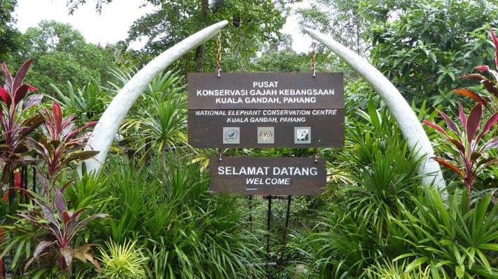 Bild: Eingang zur Elefantenschutzstation in der Nähe von Kuala Lumpur